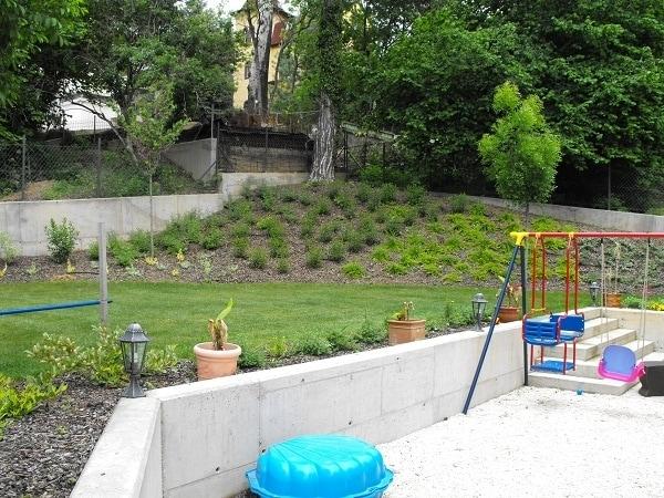 Budapest 2. kerület, növény ültetés